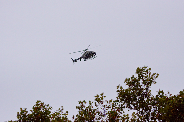 Military choppers monitor Pitt students - at least 3 copters continuously hovered over the city