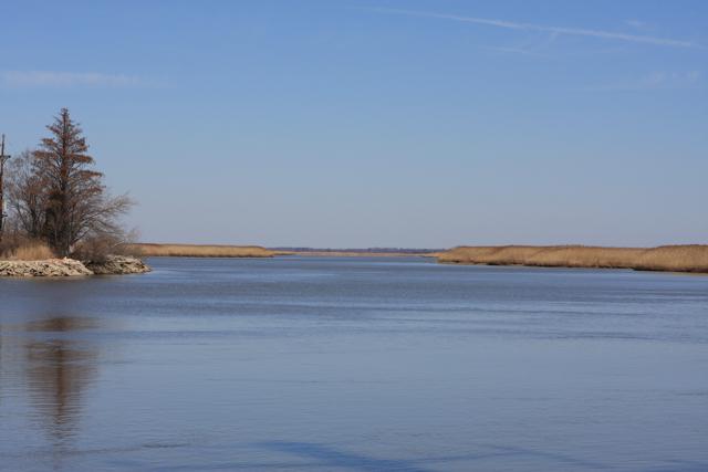 DEP protects our rivers, bays, estuaries