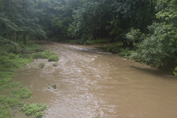 Alexauken floods after small rainfall (this is just 100 feet downstream of farm epicted)