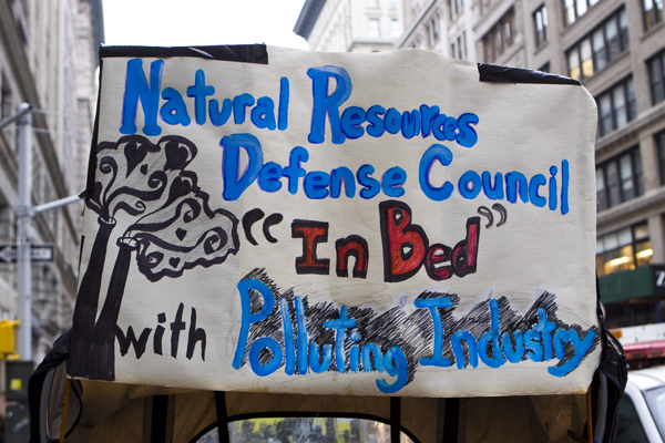 NRDC came in for harsh criticism